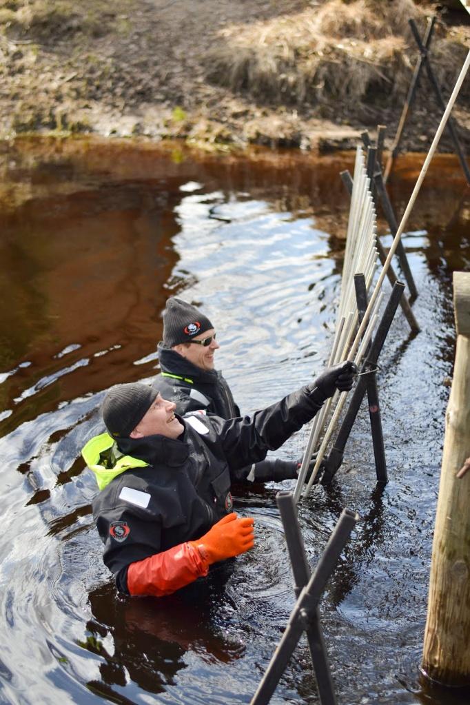 Två män i vattnet som genomför en vattenvårdsåtgärd.