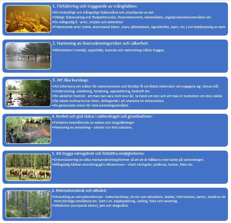 I figuren presenteras vattenvisionens sex stycken gemensamma huvudmål under varandra. I det första målet, som är att mångfalden ska förbättras och säkras, ser man att det är viktigt med att fiskbestånden är livskraftiga, att livsmiljön är mångfaldig och att invasiva arter bekämpas. Inom översvämningsriskkontrollen ser man som viktigt att människornas livsmiljö, försörjning, boende och vattenuttag säkras. Det som också anses vara viktigt är att informera om vattenvisionens mål och naturvärden samt att engagera den lokala befolkningen till att nå de gemensamma målen. Det fjärde målet fokuserar på att vattendragen och grundvattnet ska vara på en bra nivå, vilket man försöker nå genom att förbättra vattenretentionen, med skogsdränering och med att kontrol-lera belastningen. Näringarnas säkring och förbättring, så som markanvändningsformernas di-mensionering till en hållbar nivå för vattendragen och en mångfaldig hållbar utveckling som verk-ställts tillsammans, ses som viktiga åtgärder inom vattenvisionens mål. Det sjätte målet är rekreat-ionsändamål och viltvård. Utvecklingen av rekreationsändamålen fokuserar på kulturlandskap, forsar, sevärdheter, rådgivning, information, kartor och beskydd. De grenar som utvecklas är ka-jakpaddling, cykling, fiskning och vandring. Inom viltvården fokuserar man på europeisk bäver, jakt och skogsvård.